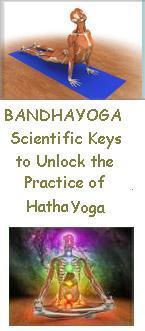 bandha yoga book opens in new window